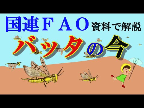 Current status and forecast of scabbard desert locusts-Explanation in FAO materials from YouTube · Duration:  14 minutes 52 seconds