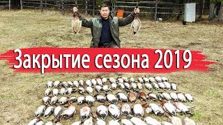 Закрытие сезона охоты на уток 2019