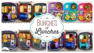 School Lunch Ideas for KIDS 🍎 JK, K, 1st grade, 2nd Grade | Bunches of Lunches