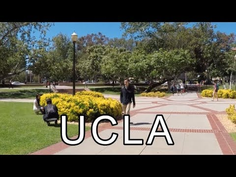 UCLA Campus Tour ( University Of California, Los Angeles )