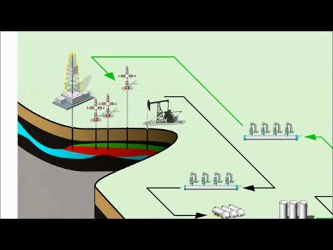 Integrated Hydrocarbon Production System