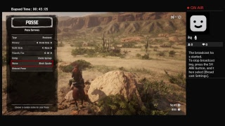 Red dead redemption 2 online race