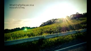 ถนนบนต้นไม้ใหญ่ - วัชราวลี [Official-audio]