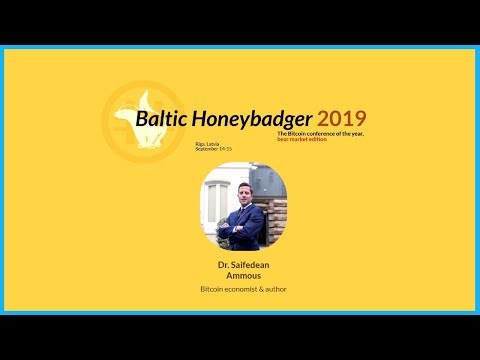 HOW TO KILL BITCOIN - Saifedean Ammous (Baltic Honeybadger 2019)