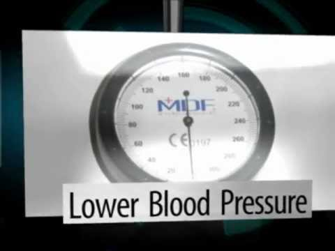 Exercise Can Lower Your Blood Pressure