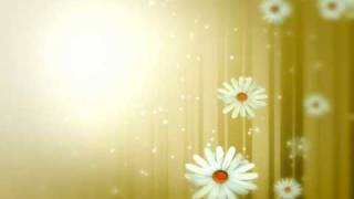 Valsa das Flores(Tchaikovsky)-Waltz of the Flowers.wmv