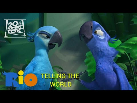 Telling The World From Rio (2011)
