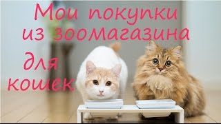 Pet haul: мои покупки из зоомагазина, мои зоопокупки для кошек, уход за кошками