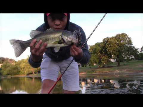 Tulsa Bass Fishing (savage 3D Rat)