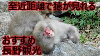サッパTVブログ→http://sappatv.jp Twitter→https://twitter.com/SAPPAT...
