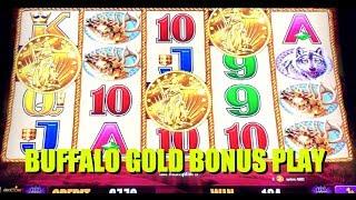 BUFFALO GOLD ⭐️ BONUS WINS @ Graton Casino | NorCal Slot Guy