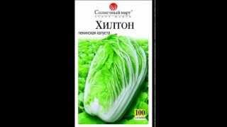 видео Семена цветов и овощей оптом