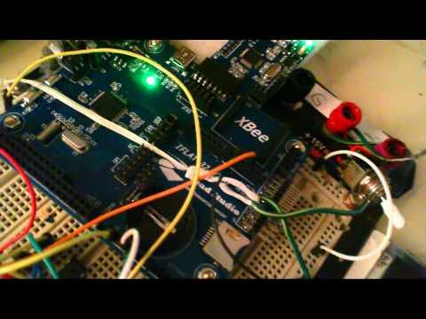 STM32 + LED Display Initial Test
