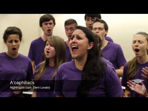 Florida State University Acaphiliacs - Nightingale (opb. Demi Lovato)
