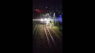 貨物列車 1085レ EF66-27 2019/01/11 花月園前踏切