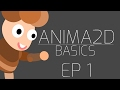 Anima 2D Basics (EP.1) Tutorial - Settin