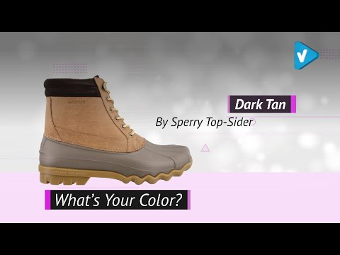 SPERRY Men's Brewster Rain Boots, 2019 Great Designs Collection