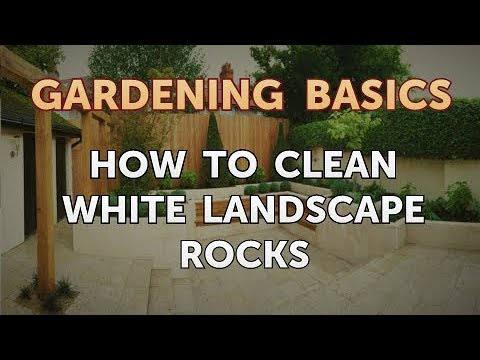 How to Clean White Landscape Rocks