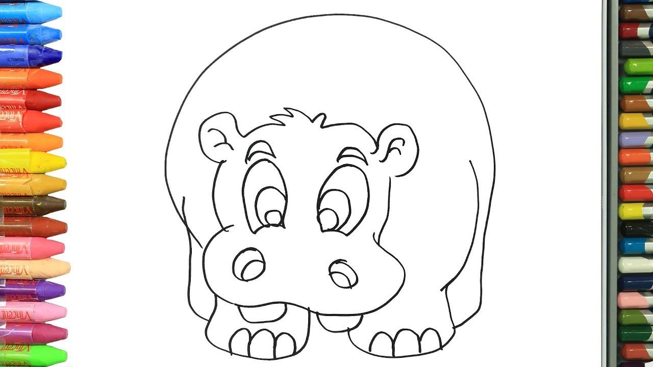 Cómo Dibujar Y Colorear Hipopótamo Dibujos Para Niños Aprender Colores