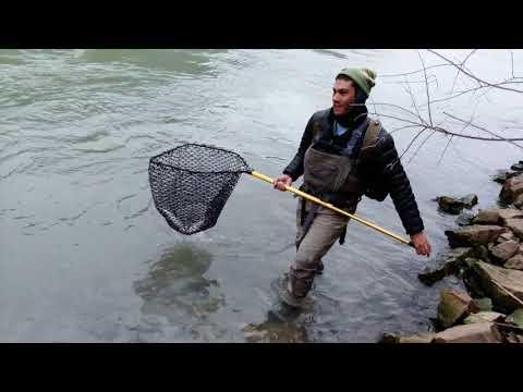 Niagara River Fly Fishing