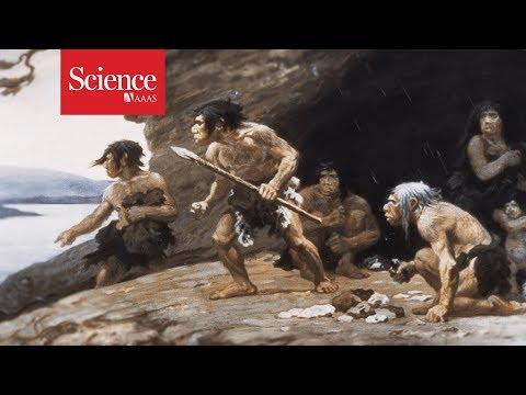 SRS 200: Neanderthals | Mark Walker