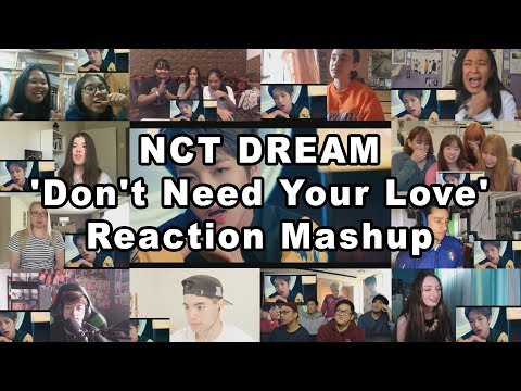 """NCT DREAM X HRVY 'Don't Need Your Love' MV """"Reaction Mashup"""""""