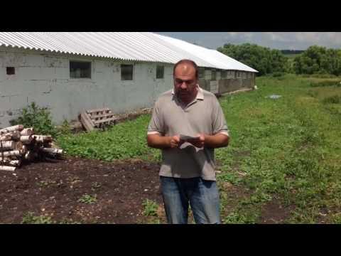 """ВСЯ ПРАВДА О ФЕРМЕРСТВЕ! """"Помощь"""" государства начинающим фермерам."""
