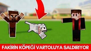 ZENGİN VS FAKİR #184 - Fakirin Köpeği Vartoluya Saldırıyor (Minecraft) Video
