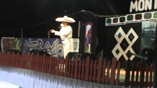 festival mexicano 2013 puyehue gorrioncillo pecho amarillo
