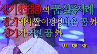 꿈해몽- 성기 꿈. 실증사례.