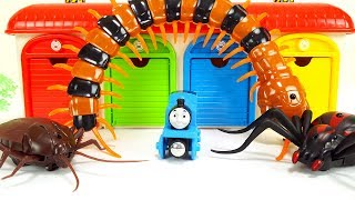 Tayo the little bus Garage & Iron Man, Spider & Cockroach & Centipede Monster, Funny Insect Story