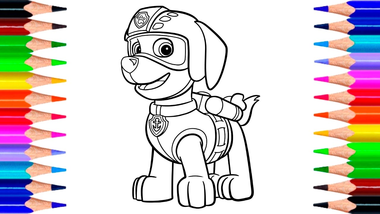 paw patrol zuma coloring pages how to draw zuma with colored pencils