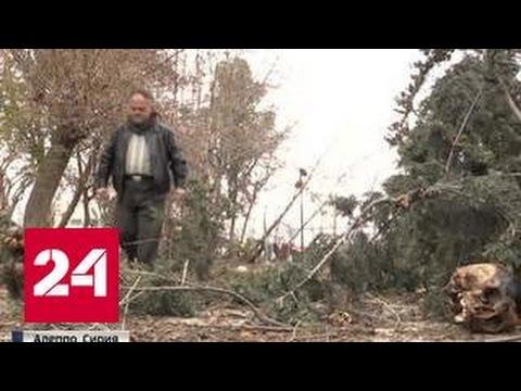 Отрубленные головы на улицах: боевик рассказал о шариатском суде в Алеппо