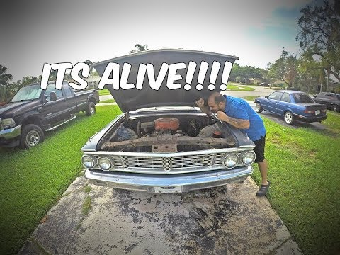 ITS ALIVE!...Well Kind Of