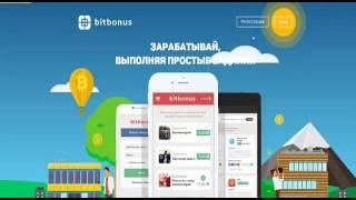 RedeX запуск нового сервиса Bitbonus обзор