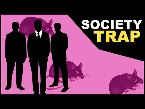 The Society Trap | Welcome To The Rat Race