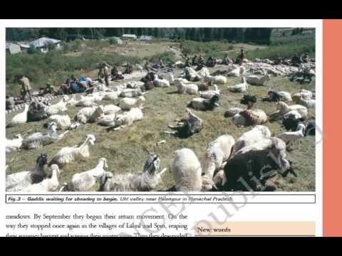 Class 9 History Chapter 5 Pastoralists In The Modern World Part 1  Hindi Explanation