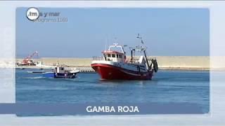 SUMARIO TIERRA Y MAR - PROGRAMA 1165  - EMISIÓN 21.5.17