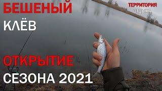 БЕШЕНЫЙ КЛЁВ Открытие сезона на реке Днестр 2021 рыбалка фидер 2021 рыбалка на речке Днестр