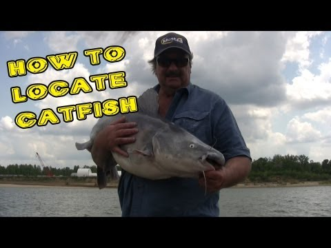 How To Fish For Catfish At Dams: Suspend Drifting On Structure.