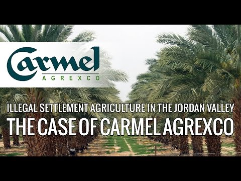 Illegal settlement agriculture in the Jordan Valley - The case of Carmel Agrexco