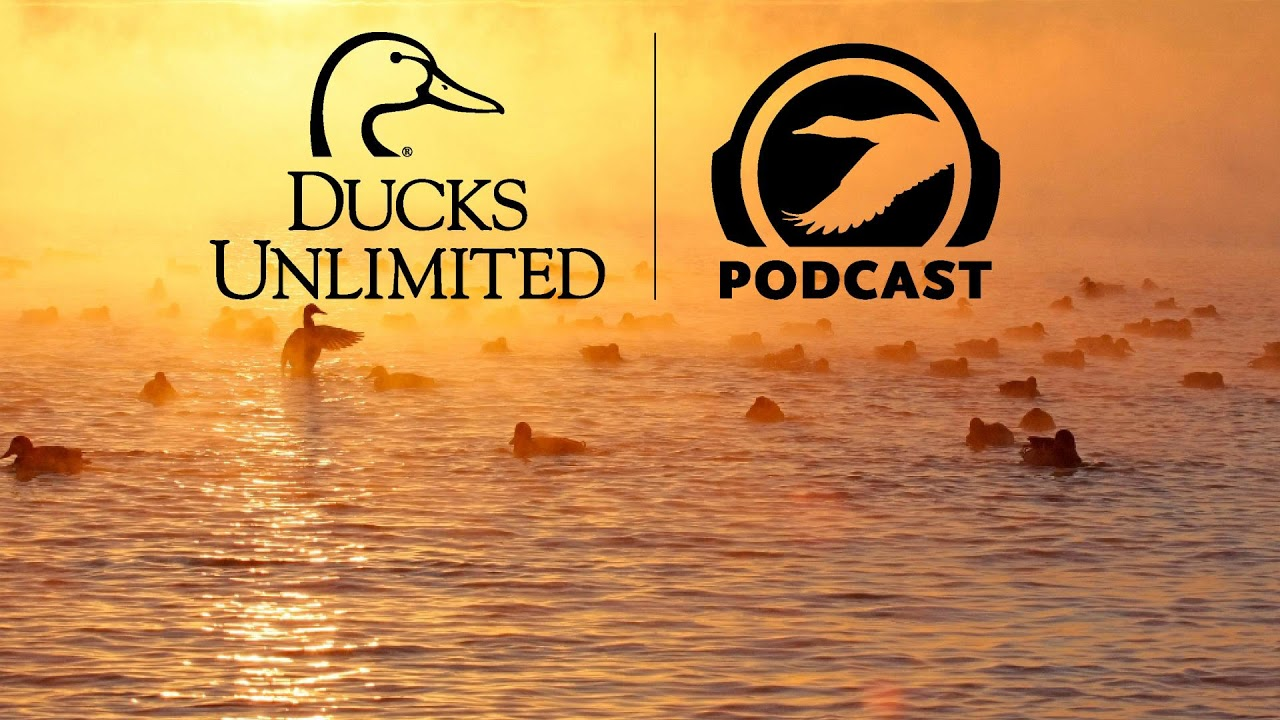 Download Ep. 11 – Wildfire and Duck Science in the Boreal Forest
