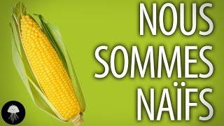 Les OGMs sont-ils nocifs ? (non) - DBY #27