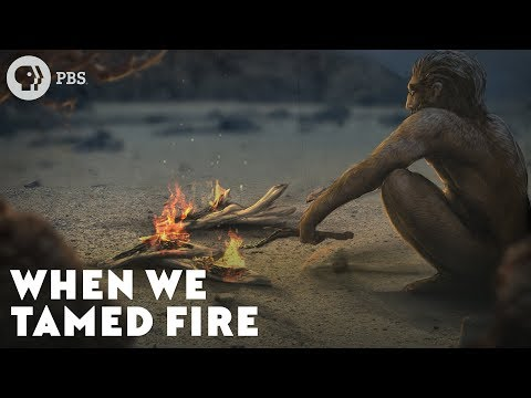 When We Tamed Fire