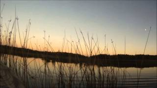 Осенняя охота на уток в Канаде видео