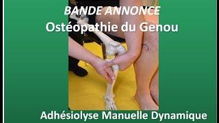 Ostéopathie du Genou = dysfonctions: Fascias, Fibula, Ménisques, Capsule, retinaculum