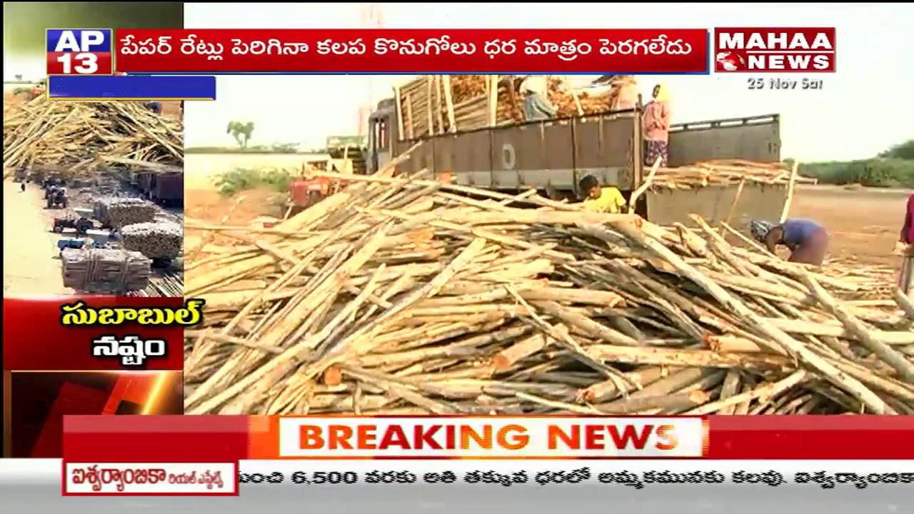 Subabul Farmers Demand AP Govt for Support Price | Prakasam Dist | Mahaa  News