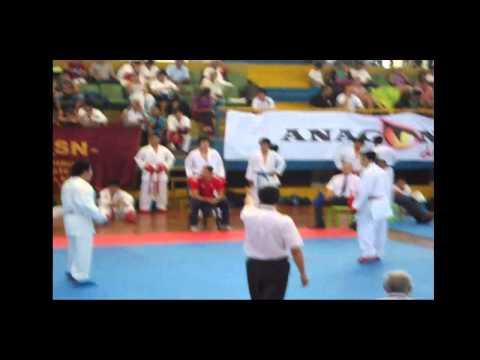 Rodrigo Vergara FPK Tarapoto 2013 Kumite Semifinal...