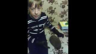 Самое классное создание В МИРЕ!/Внеплановое видео о животных. Дашка Эвэй завела ЕЖЫка