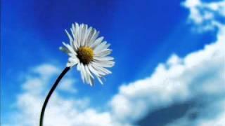 【高音質】あなたへ ~旅立ちに寄せるメッセージ~ thumbnail